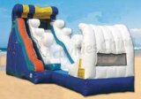 Inflatable Water Slide (SH-1001)