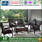 Rattan Outdoor Sofa of Buy Outdoor Furniture Leisure Series (TG-278)