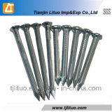 Galvanized Concrete Nails with Harden Material (45#)