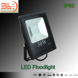 Low Cost IP65 30W LED Floodlight CE SAA
