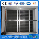 Metal Mesh Aluminum Security Window