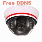 WiFi IP Camera (KW-9111W)