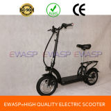 12 Inch Wheel 350W Brushless Gear Motor Lithium Battery Power Folding Mini Electric Scooter