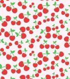 Fruit Printing 600d Fabic for School′s Bags!