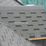 Gothic Asphalt Shingle
