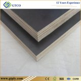 18mm Ffp Shuttering Plywood Specifications Cheap Waterproof Building Board