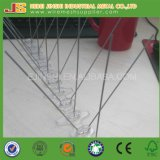 Bird Control Plastic Based Anti Bird Spikes for Sale