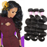Top Quality Vrigin Remy Human Hair Extension Body Wave (B13)