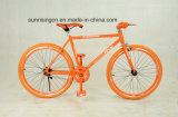 Track Cycling Track003