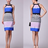 2013 Fashion Clothes for Women, Career Apparel, Print Dress (C1010)