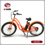 Female Electric Bicycle with MTB Fat Tire for Sale