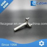 Gear Box/Sped Reducer Worm Wheel/Gearbox Worm Wheel Spare Part