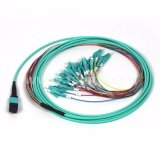 24fiber MPO Bunch Cable 24 Cores Om3 MTP/MPO Patch Cable