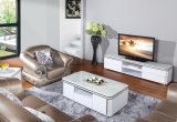 2015 Modern Living Room Furniture TV Bench TV Stand (DS-198)