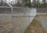 PVC Coated Chain Link Wire Mesh Fence/Diamond Wire Mesh