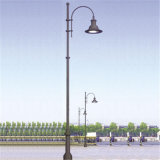 3m High Cast Aluminum Decorative Single Head Lamp Post