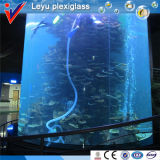 High Acrylic Cylinder Aquarium in Hotel