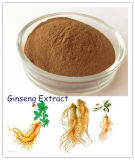 Panax Ginseng Root Extract Ginsenosides