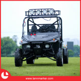1100cc off Road 2 Seat Dune Buggy 4X4
