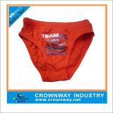 100% Cotton Boys Sexy Slip Briefs Underwear