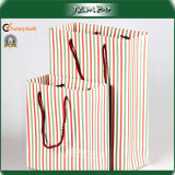 Factory Made Recycled Eco Friendly Gift Paper Promotion Bag