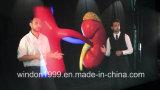3D Holographic Stage Foil / Hologram Display / Holographic Reflection Film