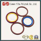 ISO9001, SGS High Quality Viton Seal Ring / O-Rings