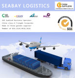 Sea Freight From Shanghai to Callao Peru