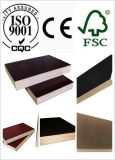 Poplar Core Film Faced Plywood First Grade (HB108)