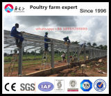 Nigeria Steel Structure Broiler House Project