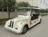 8 Seaters Electric Buggy for Sale