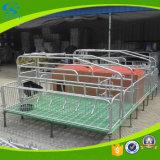 Pig Pen for Farrowing Pig Farm
