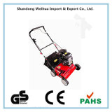 """China 16"""" Lawn Rake with GS and Ce"""
