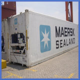 Logistics Reefer Container From Shenzhen, China to Veracruz / Guadalajara