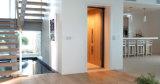 Fjzy World Famous Villa Elevator