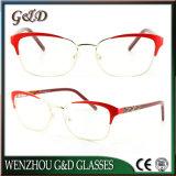 New Design Metal Glasses Eyewear Eyeglass Optical Frame Double Color 9019