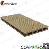 WPC Outdoor Products Wood Plastic Decking (TS-04B)