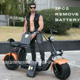 Dirt Bike Electric Scooter Motorcycle Hot Sale in Market