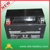 12V7ah Ytx7a-BS-Mf Maintenance-Free Motorcycle Battery