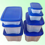 Plastic Mould for Display Case Container Storage Box