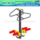 Outdoor Body Building Equipment Outdoor Double Twister (HA-12102)