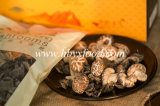 Dried Vegetable Tea Flower Shiitake Mushroom