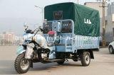 Three Wheel Bike Cargo Triciclo