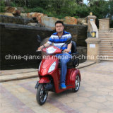 Hub Motor Handicapped Motorcycle with Ce