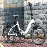 Fashion Style Electric Folding Bike with 7-Speed Derailleur (RSEB-107)