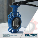 Cast Iron Gg25 Resilient Seated Wafer Butterfly Valve