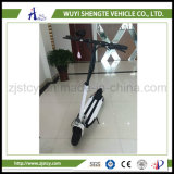 Made in China Hot Sale Newable Electric Scooter 48V 500W