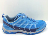 Latest Fashion Men Running Shoes Athletic Shoes Sneaker (ws16126-6)