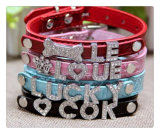 English Letters Dog Collar Pet Collar