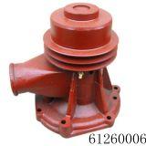Weichai Water Pump 612600060165 for Sinotruk, Dongfeng, Foton, FAW Truck